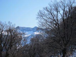 冬瓜平から。左端が笈ヶ岳ピーク。